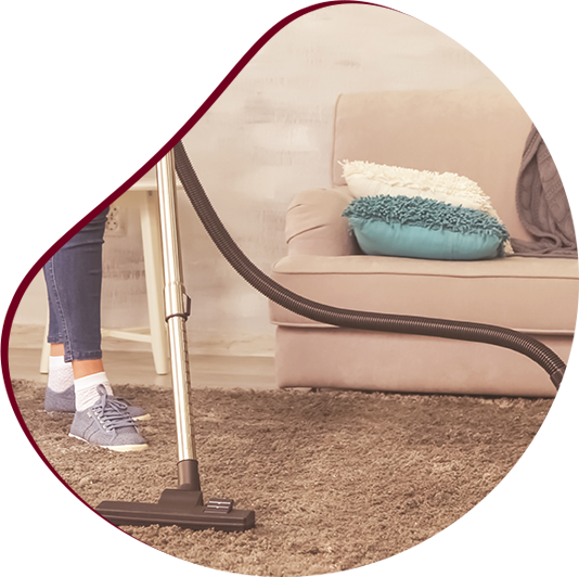 cropped image of young beautiful woman vacuuming the carpet