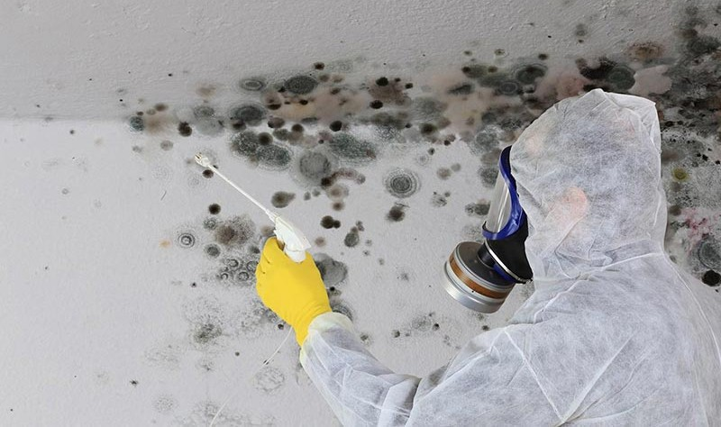 a young man wearing PPE kit removing mould from a wall