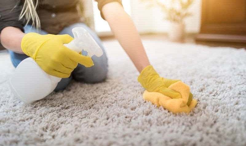 cropped picture of a woman wiping a carpet with a cloth rag
